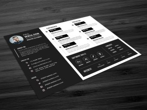 Free Horizontal Resume Template