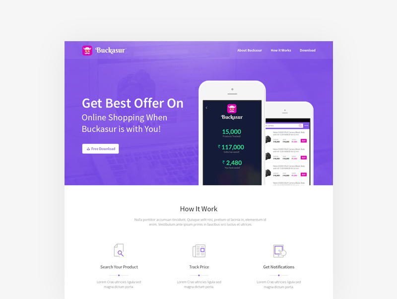Buckasur : Mobile Application Landing Page