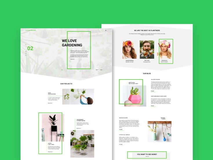 Free FLorist Website Template
