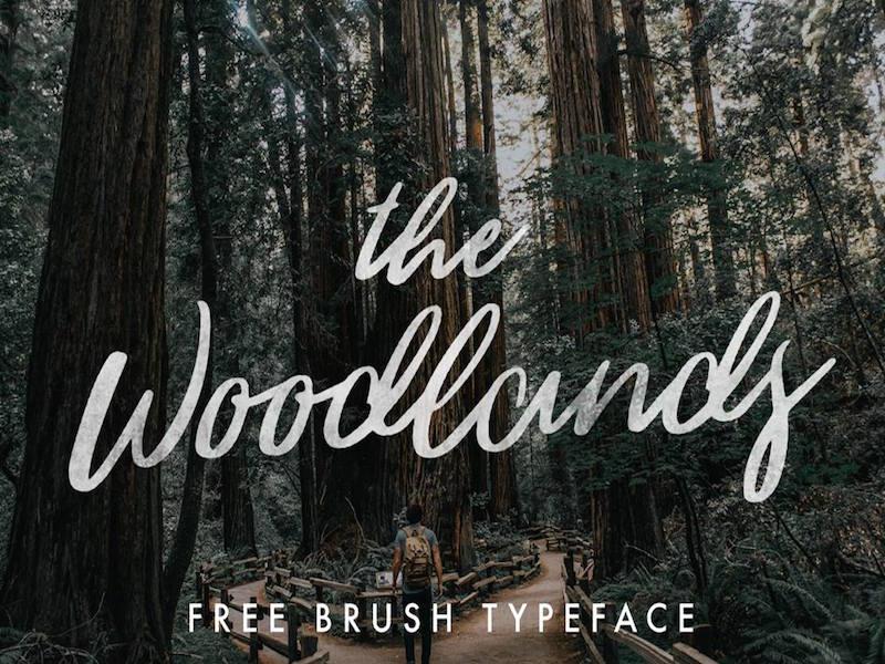 Woodlands – Modern Brush Script Font