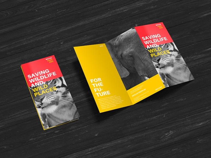 Free Z-Fold Brochure Mockup