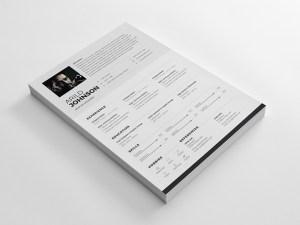 Clean Resume/CV TemplateClean Resume/CV Template