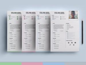 Elegant CV Resume Template (AI)