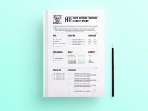 Free Fully Editable Resume Template