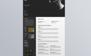 Free Visual Designer Resume Template