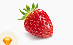 Strawberry Sketch Vector Illustration