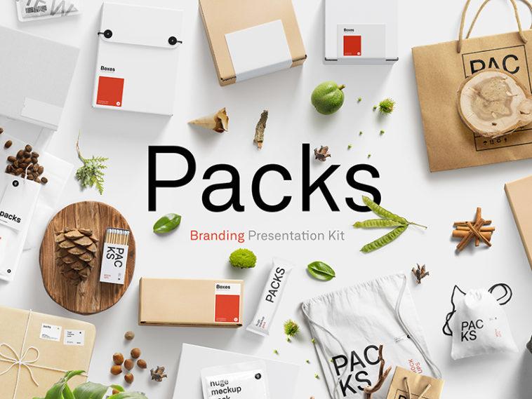 Free Branding Presentation Mockup Kit