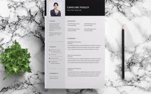 Free Assistant Manager Resume Template