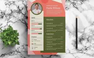 Free Digital Marketing Strategist Resume Template