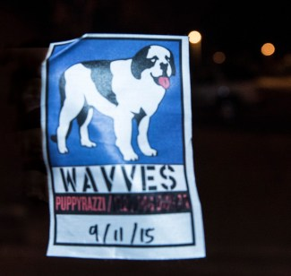 Wavves (28 of 28)