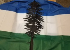 The Cascadian Flag: A Transformative Icon