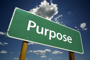 What's your true purpose?