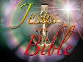 BIBLE VERSED (8)
