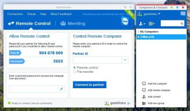 TeamViewer License Key
