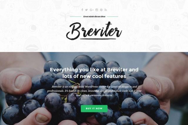 Breviter - Free PSD Theme