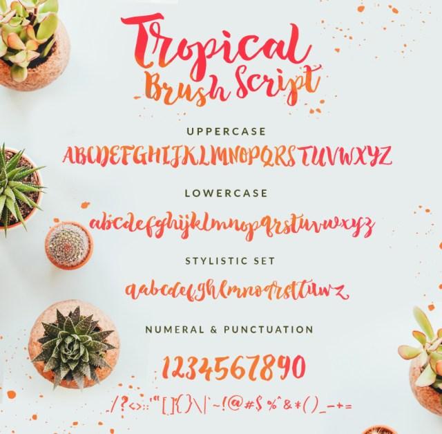 Tropical Brush Script Free Demo