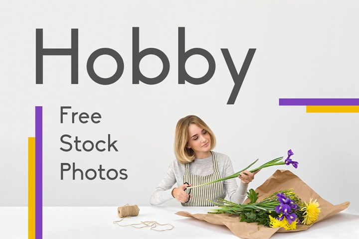 Free Hobby Photo Collection