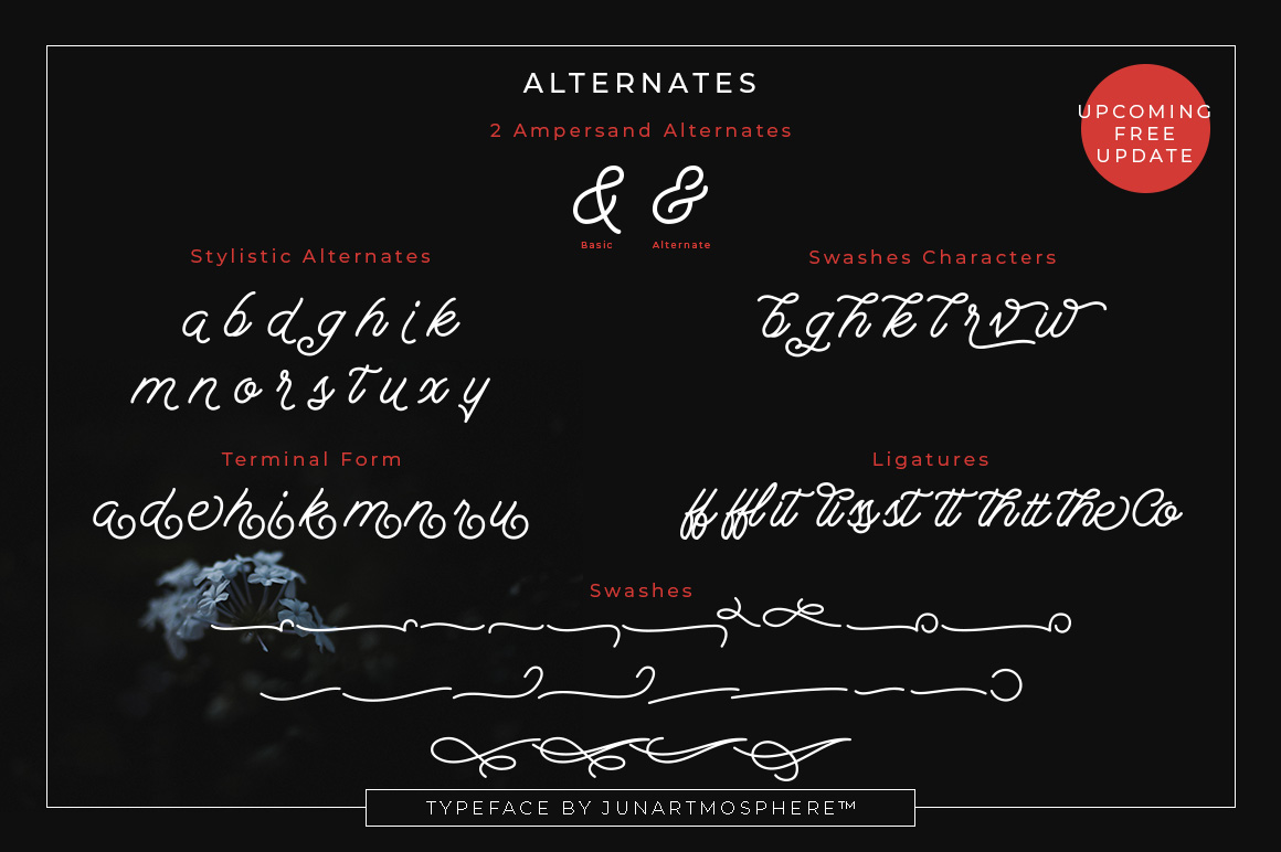 Berliana Monoline Font Demo