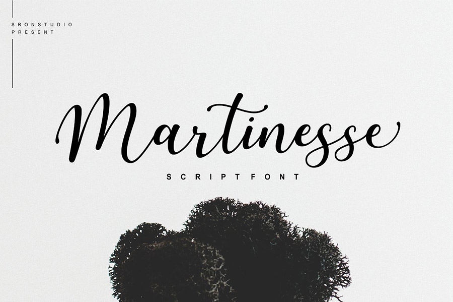 Martinesse Beautiful Script Demo
