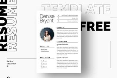 syra free resume template