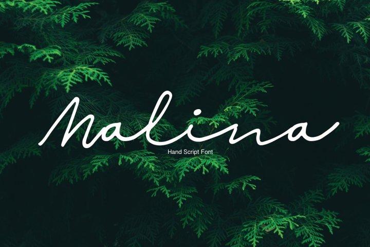 Malina Script Font Demo