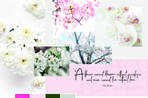 Apple Blossom Font Demo