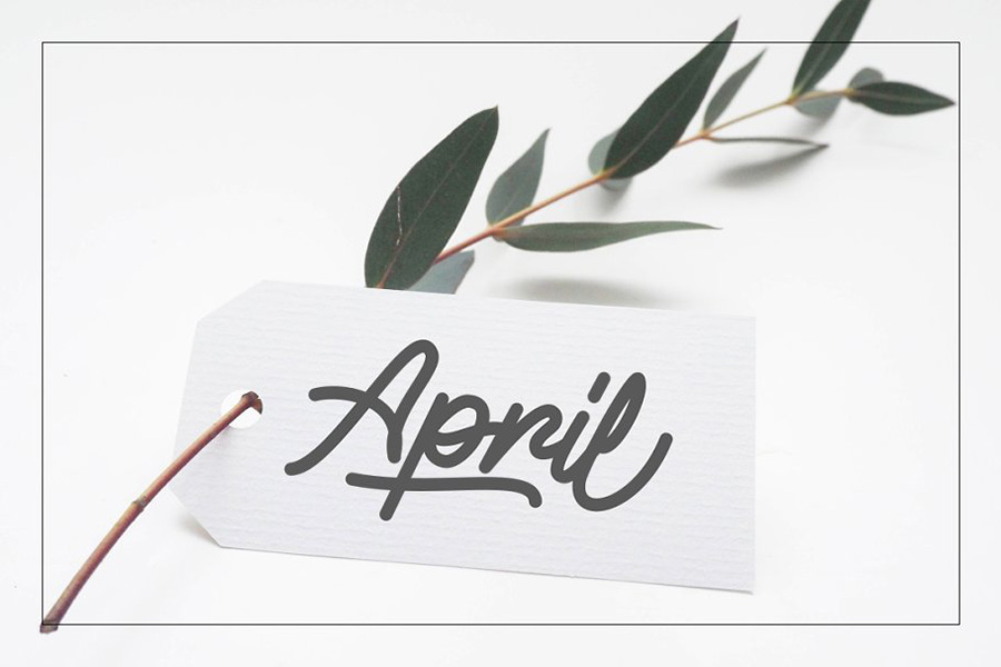 Alvaro Stylistic Monoline Font