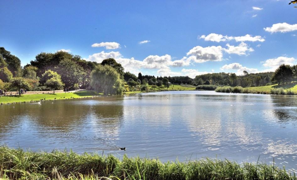 Leeds Castle Lake - DSC_0378