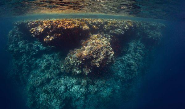 Freediving in Padang Bai