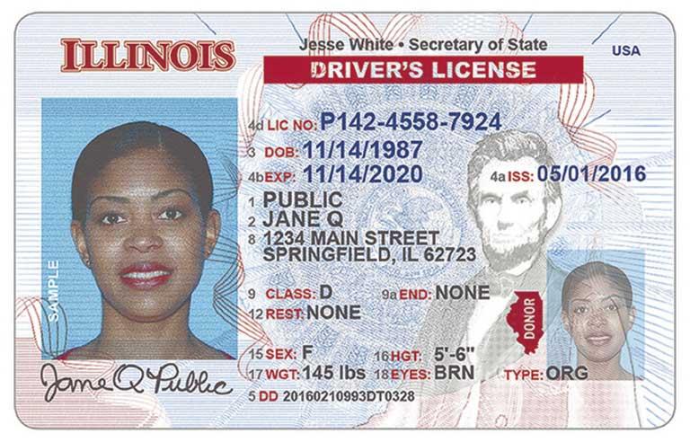 Illinois Driver's License - FreeDMVTest.org