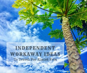 workaway ideas