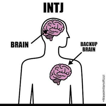 intj-heart-brain