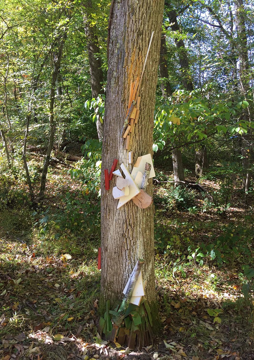 Raw, Milled, Held Close, 2016. Freedom Baird. Living ash tree, scrap lumber, acrylic paint. Longwood Lake, Oak ridge, NJ