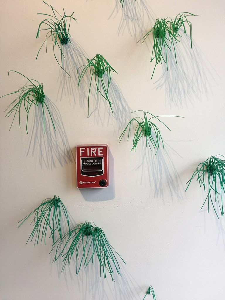 Florasy, 2019. Twist ties, map pins, fire alarm boxes. Installed for the in-habit exhibition produced by Blueprint Projects at the Lincoln Arts Gallery, spring 2019. Freedom Baird