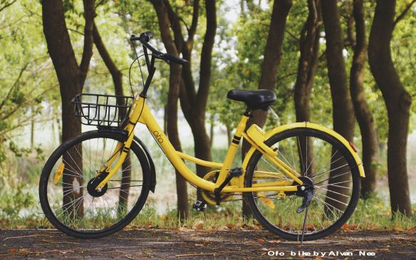 Cycle - Ofo.jpg