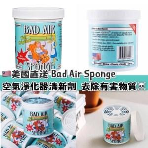 美國🇱🇷 Bad Air Sponge 除甲醛空氣淨化器清新劑 450g