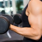6 Factors For Gaining Muscle Mass
