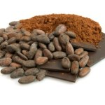 A selection of whole and ground cocoa beans.