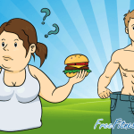 The Key Components Of A Muscle Building Diet Infographic
