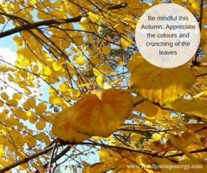 Autumn Mindfulness