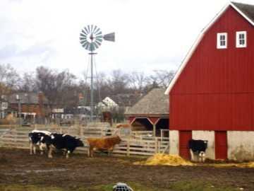 wagner farm glenview