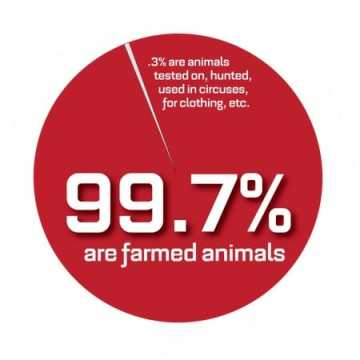 997 Farmed Animal Pie Chart 450