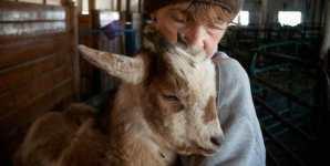 Cheri Ezell, former dairy farmer