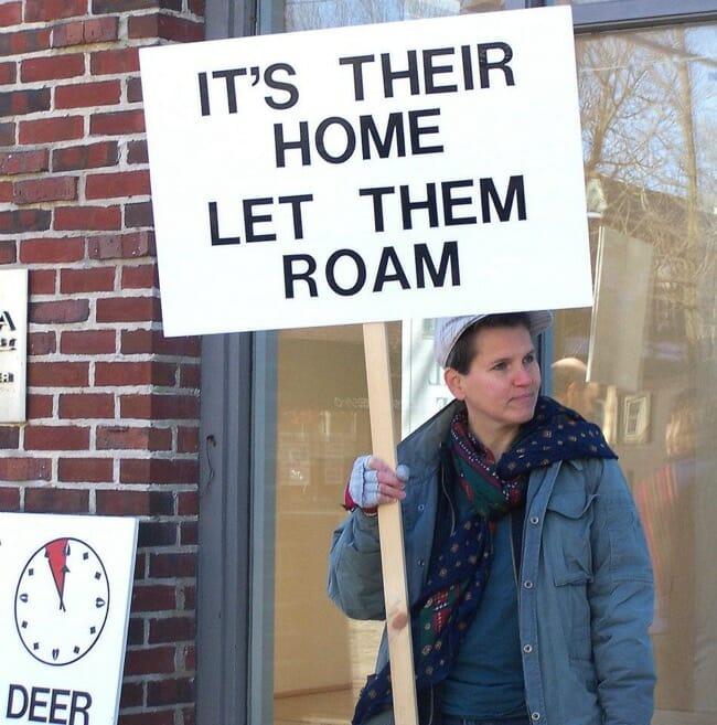 let-them-roam-1