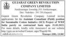 GGRC Recruitment For Assistant Consultant Posts 2021
