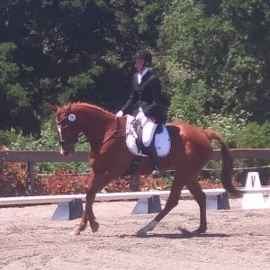 Lucinda during a Training 1 Dressage Test at Yarra Yarra Equestrian Center in April of 2019.