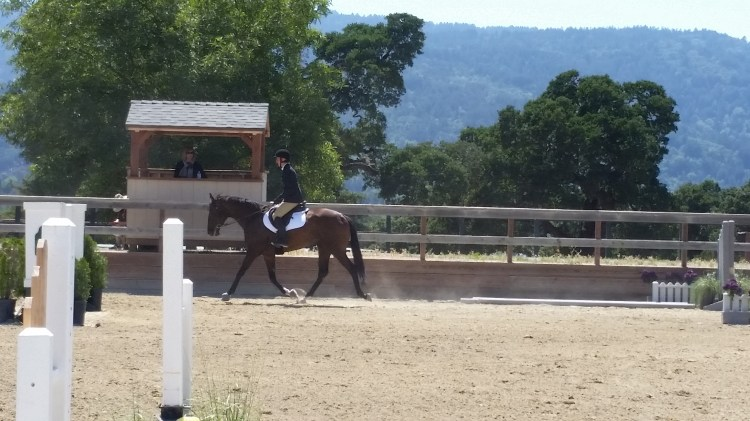 London in a Hunter Under Saddle Class