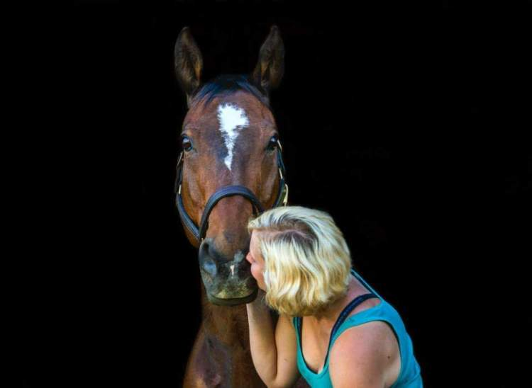 Rewarding a Horse with Affection data-recalc-dims=