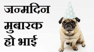 Funny-Birthday-Wishes-For-Brother-In-Hindi (3)