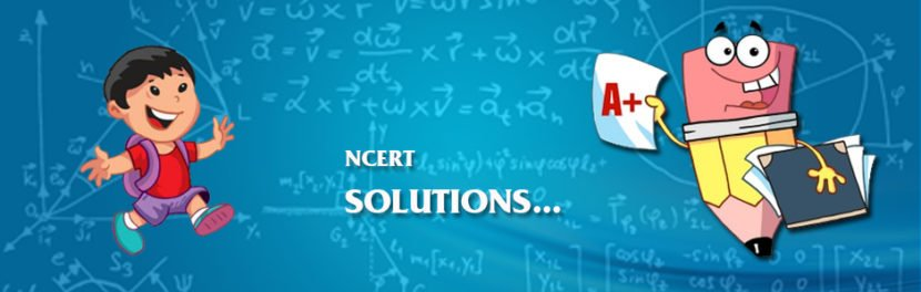 NCERT Solutions For Class 8th Maths PDF Download